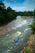 Costa Rica, La Virgen de Sarapiqui, Sarapiqui River, White Water Rafting, Tirimbina Biological Reserve, Rainforest