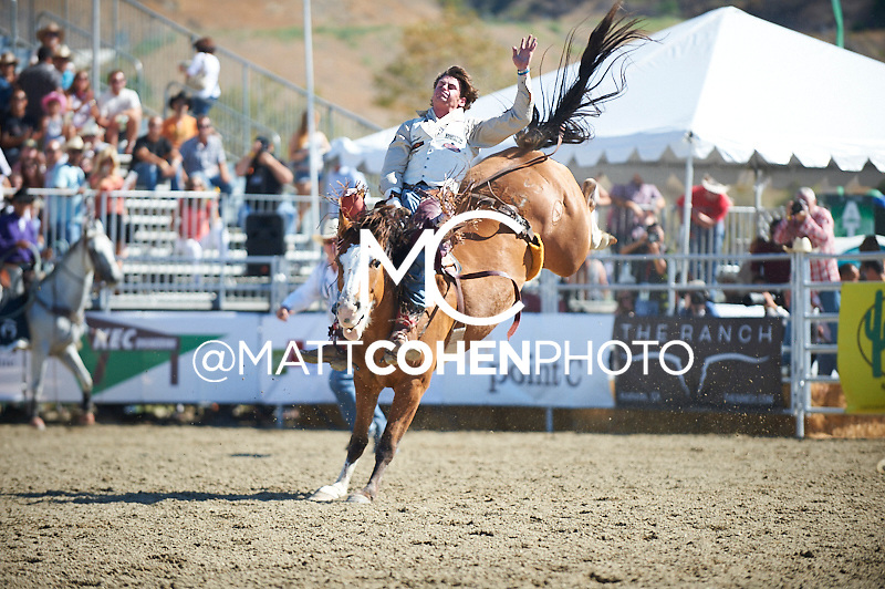 Bareback rider R.C. Landingham of Pendleton, OR rides -Q57 Backfire at the Rancho Mission Viejo Rodeo in San Juan Capistrano, CA.<br /> <br /> <br /> UNEDITED LOW-RES PREVIEW<br /> <br /> <br /> File shown may be an unedited low resolution version used as a proof only. All prints are 100% guaranteed for quality. Sizes 8x10+ come with a version for personal social media. I am currently not selling downloads for commercial/brand use.