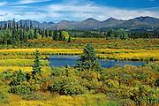 autumn scenic with St. Elias Mountains <br /> Kluane NAtional Park<br /> Yukon<br /> Canada