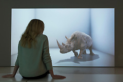 "© Licensed to London News Pictures. 20/11/2019. LONDON, UK. A staff member views ""The Substitute"", 2019, by Alexandra Daisy Ginsberg. Preview of ""Eco-Visionaries"" exhibition at the Royal Academy of Arts in Piccadilly.  The exhibition examines humankind's ecological impact on the planet through works from 21 international practitioners using a variety of media.  The show runs 22 November to 23 February 2020.  Photo credit: Stephen Chung/LNP"