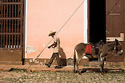 Elderly man and his donkey on the street of Trinidad, Cuba on Wednesday August 6, 2008.