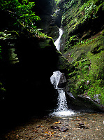 Saint Nectan's Glen is a area of woodland in Trethevy near Tintagel, north Cornwall stretching for about  one mile along both banks of the Trevillet River. The  most prominent feature is St Nectan's Kieve, asixty foot waterfall through a hole in the rocks.photo by Brian Jordan