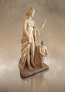 Roman marble sculpture of Aphrodite (Venus) of the Venus Felix Type , copied from a  2nd to 1st century BC Hellanistic Greek original, inv 6300, Naples Museum of Archaeology, Italy ..<br /> <br /> If you prefer to buy from our ALAMY STOCK LIBRARY page at https://www.alamy.com/portfolio/paul-williams-funkystock/greco-roman-sculptures.html . Type -    Naples    - into LOWER SEARCH WITHIN GALLERY box - Refine search by adding a subject, place, background colour, museum etc.<br /> <br /> Visit our CLASSICAL WORLD HISTORIC SITES PHOTO COLLECTIONS for more photos to download or buy as wall art prints https://funkystock.photoshelter.com/gallery-collection/The-Romans-Art-Artefacts-Antiquities-Historic-Sites-Pictures-Images/C0000r2uLJJo9_s0c