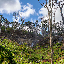 Fea0093883. DT News.Tananarive a mining village near AMBATONDRAZAKA,The Ankeniheny-Zahamena Corridor, Madagascar.Pic Shows smoke still smolders after trees and shrubbery is cleared by miners  in the village of Tananarive