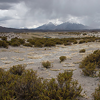 Parinacota (6348m) and Pomerape (6282m) are volcanoes located in Nevados de Payachata, near the border of Bolivia.