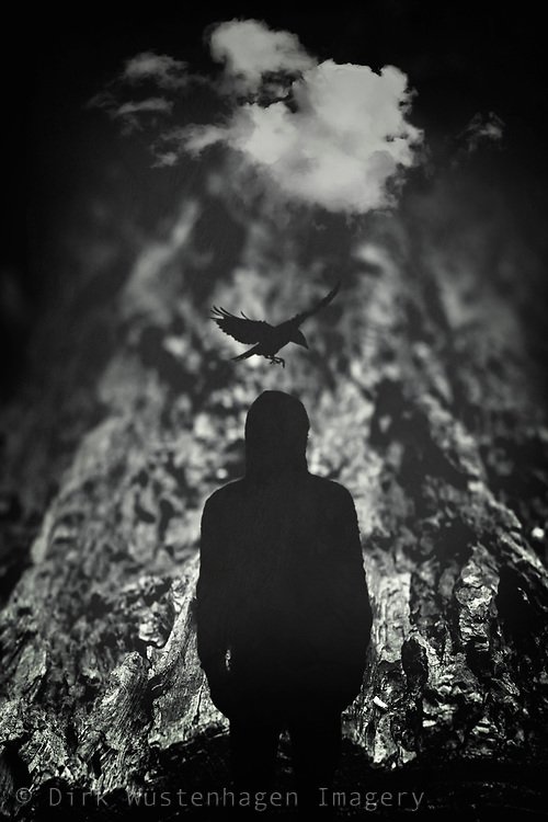 Dreamy photo illustration with the silhouette of a man, a crow and a cloud