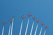 The Snowbirds preform a fly-by over Ottawa.