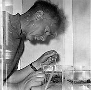 15/07/1958<br /> 07/15/1958<br /> 15 July 1958<br /> Bristol University Students Camp in Co. Cork.