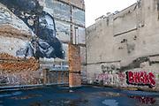 2020-02-18 Kraków. Graffiti na ul. Wawrzyńca na Krakowskim Kazimierzu.