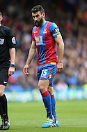 Mile Jedinak, the Captain Palace captain looks on. Barclays Premier League match, Crystal Palace v Norwich city at Selhurst Park in London on Saturday 9th April 2016. pic by John Patrick Fletcher, Andrew Orchard sports photography.