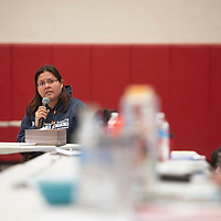 Teracita Keyanna of Red Water Pond Road speaks to members of the Navajo Nation Council during a public hearing on the impacts of uranium Friday, March 6 at Navajo Technical University in Crownpoint. There are two upcoming uranium public hearings, March 13 in Chinle and March 14 in Tuba City.