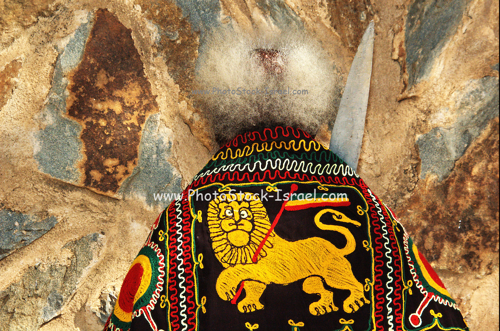 Africa, Ethiopia, Axum The Lion of Judea at the Timket celebration January 18th 2009