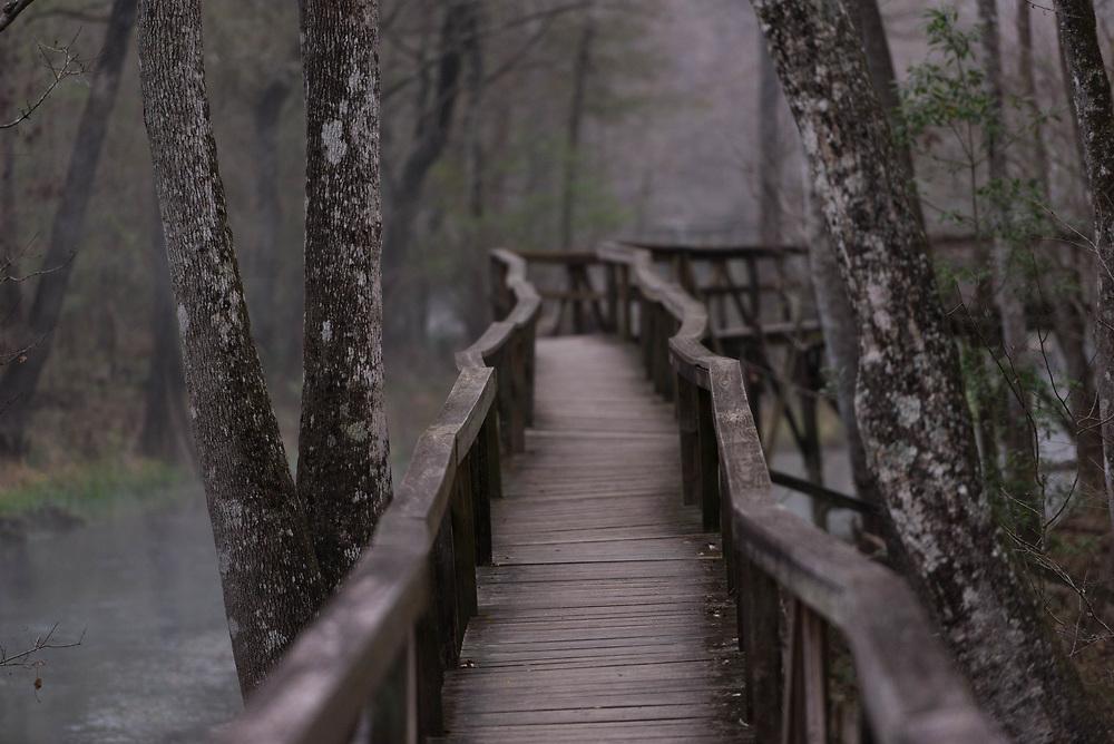 The old boardwalk at Gilchrist Blue Springs, Florida
