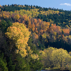 Fall along the Connecticut River in Colebrook, New Hampshire.