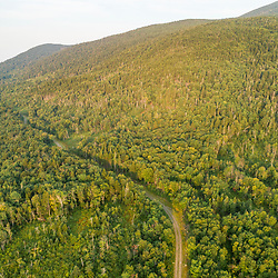 A logging road on the lower slopes of Coburn Mountain in Northwest Somerset, Maine. Boundary Mountains region. Site of proposed CMP transmission corridor.