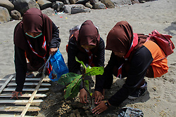 November 4, 2018 - Lhokseumawe, Aceh, Indonesia - Volunteers seen planting a tree in part of the new project to clean up the beach..Indonesian volunteers from BNPB (National Board for Disaster Management) conducted a beach cleanup and also planted 3000 trees to create a clean environment for everyone in Lhokseumawe City. (Credit Image: © Maskur Has/SOPA Images via ZUMA Wire)