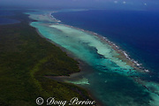 aerial view of Turneffe Atoll ( Turneffe Island ), showing reef and mangroves, Belize, Central America  ( Caribbean Sea )