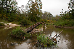 San Jacinto River as it courses along the western boundary of Camp Strake, Conroe, Texas. Camp is on the left.
