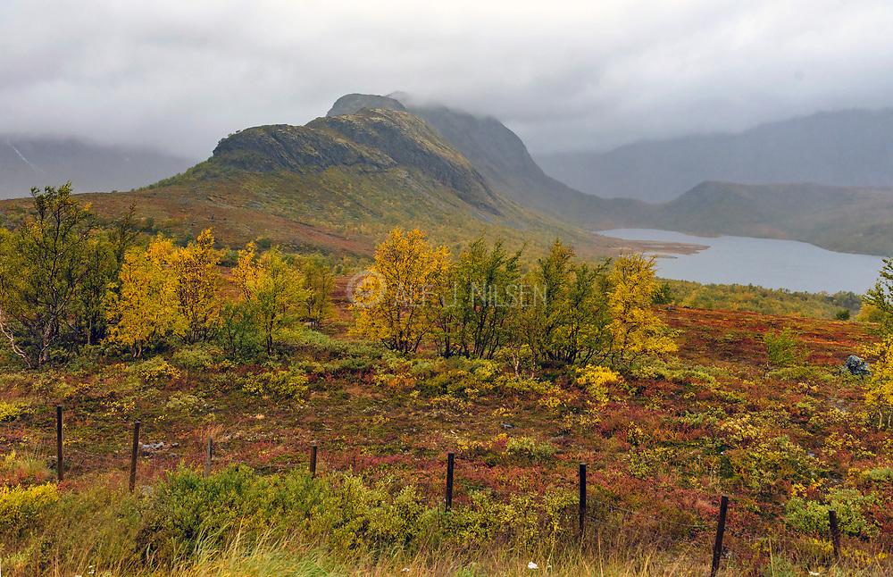Mountain scenery a foggy day in September at Vargebakken looking towards the lake Nedre Leirungen (Vågå, Innlandet), Norway.