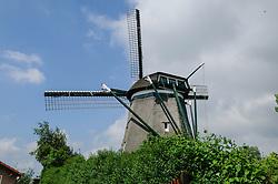 Spaarndam Oost, Haarlemmerliede en Spaarnwoude, Noord Holland, Netherlands