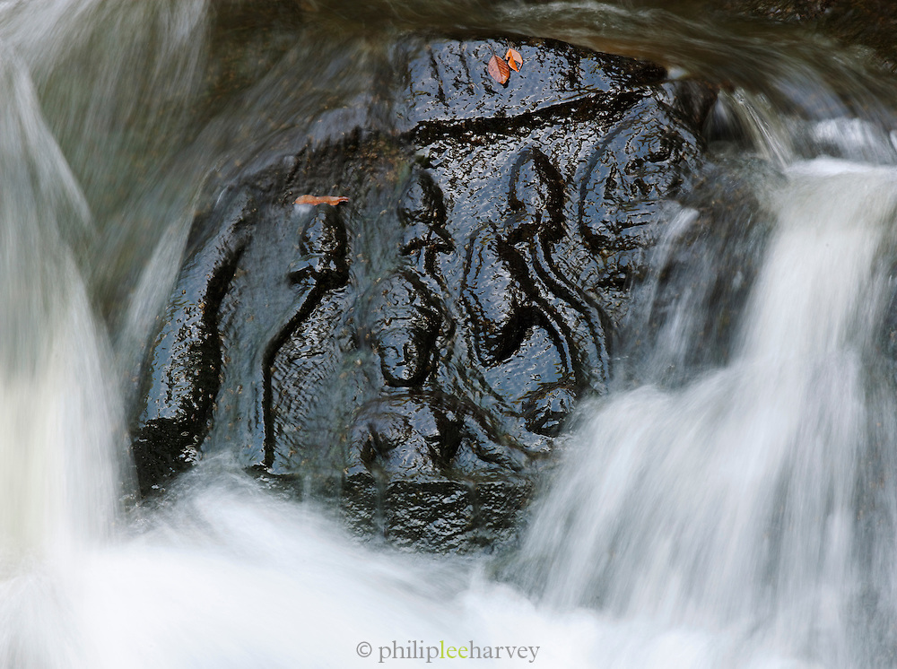Engravings carved into the rock riverbed at Kbal Spean, Cambodia