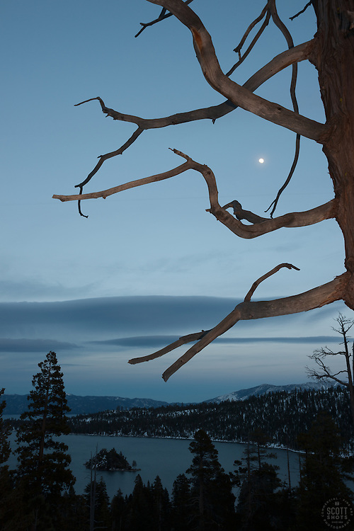 """""""Moon Over Emerald Bay 1"""" - This moon and tree were photographed in the evening at Emerald Bay, lake Tahoe."""
