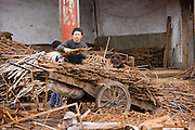 Man and boy working at metal recycling steel, loading a wooden cart, in Dazu County, Chongqing, China