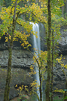 South Falls, Silver Falls State Park Oregon