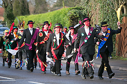 "© Licensed to London News Pictures.10/1/2015.Sharnford, Leicestershire, UK. The annual plough tour by the Hinckley Bullockers took place today. Pictured, walking along the Leicester road in Sharnford. Visiting seven venues around Leicestershire the Bullockers, some with with red painted faces, are seen pulling their decorated plough along the street before stopping to perform traditional dances.<br /> <br /> HISTORY -  On the first Monday after Twelfth Night - Plough Monday - the plough was prepared for the new season, dressed in gaudy ribbons and taken in procession around the villages. In South West Leicestershire the men pulling the plough, who ""raddled"" their faces, were known as Plough Bullocks and were aided and abetted by dancers who danced dances peculiar to the Eastern Counties. The Plough Bullocks and the Molly Dancers were last seen in this area at the turn of the century in Sapcote.<br />  Traditionally, the Plough Bullockers would stop at public houses, farms and large houses, dance and/or sing and demand recognition in the form of cash donations or drink. If neither was forthcoming the offending landlord's drive was ploughed up. Photo credit : Dave Warren/LNP"