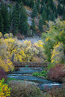 The Provo River slowly flows down the canyon and under a steel bridge surrounded by the remaining colors of Fall.