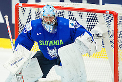 Robert Kristan of Slovenia during Ice Hockey match between Slovenia and USA at Day 10 in Group B of 2015 IIHF World Championship, on May 10, 2015 in CEZ Arena, Ostrava, Czech Republic. Photo by Vid Ponikvar / Sportida