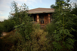 29 August 2007. Lower 9th Ward, New Orleans, Louisiana. <br /> Second anniversary of Hurricane Katrina. Deserted, empty houses remain derelict and decimated in the Lower 9th Ward. The area remains mostly abandoned and overgrown, ghostly reminders of lives that once were. President Bush came to town and claimed he could be proud of what local and federal government have achieved in the city. Yet two years after the storm, it is quite clear that local and federal government are failing and have a great deal to do to live up their promises.<br /> Photo credit©; Charlie Varley/varleypix.com