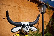 Pirenopolis_GO, Brasil..Imagens da cidade historica de Pirenopolis, Goias. Na foto um Curucucu...Pirenopolis, historical city in Goias. In this photo a Curucucu...Foto: JOAO MARCOS ROSA / NITRO