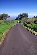 Road, Ulupalakua, Maui, Hawaii<br />