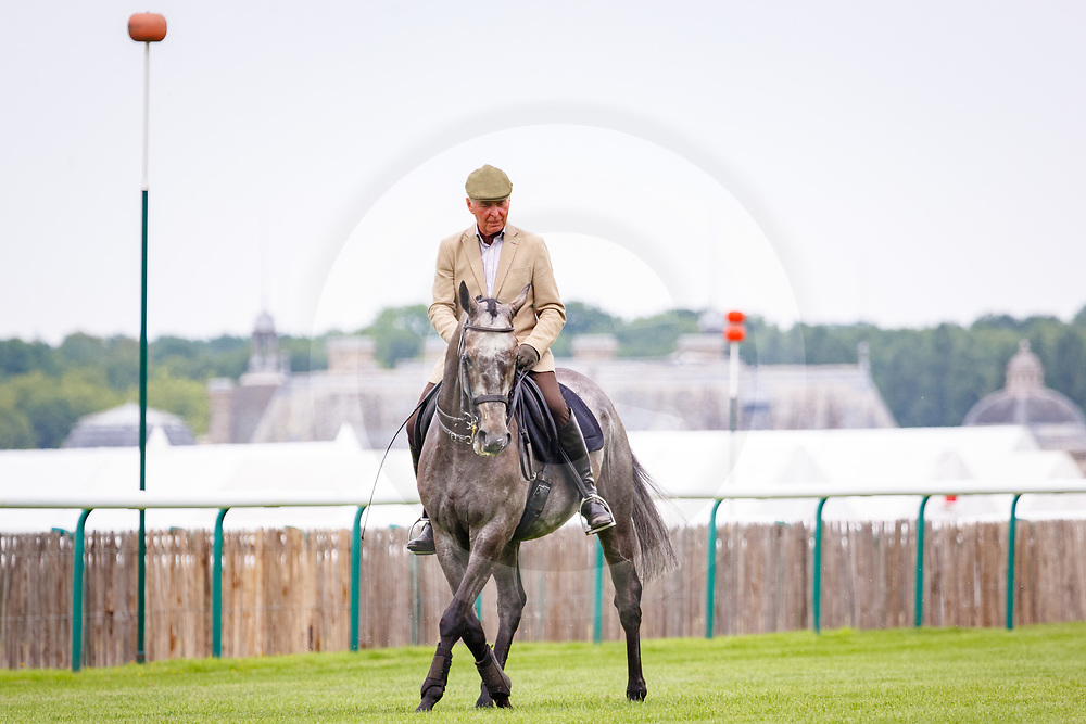 Almiyr and Yves Bienamié dressage show during Retrained Racehorse Day in Chantilly, 09/07/2017, photo: Zuzanna Lupa