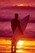 Surfer watching ocean sunset.