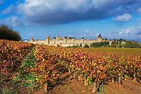 France, Aude (11), Carcassonne, cite medievale classee Patrimoine Mondial de l'UNESCO // France, Aude department, Medieval city of Carcassonne