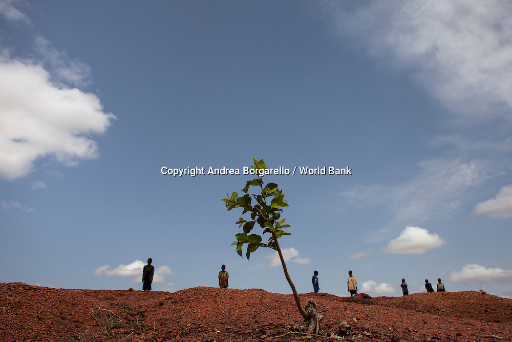 Burkina Faso, North. The World Bank funded Programme National deGestion des Terroirs  supports communities to live off the products from the regenerated land.