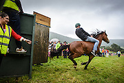 A young pony takes off at speed with his jockey clinging on.