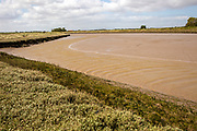 Barthorp's Creek a tidal tributary near the mouth of the River Ore at low tide, Hollesley, Suffolk, England, UK