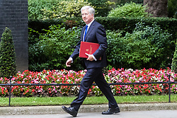 London, June 27th 2017. Defence Secretary Michael Fallon attends the weekly UK cabinet meeting at 10 Downing Street in London.