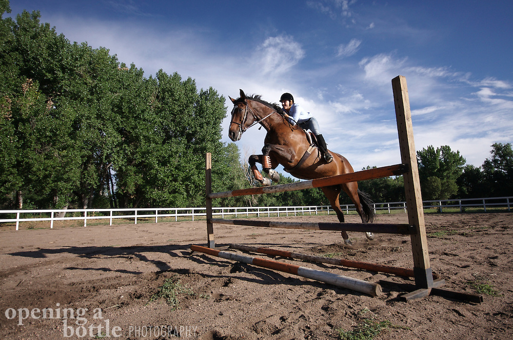 A female rider and her thoroughbred horse practice jumping, Louviers, Colorado.