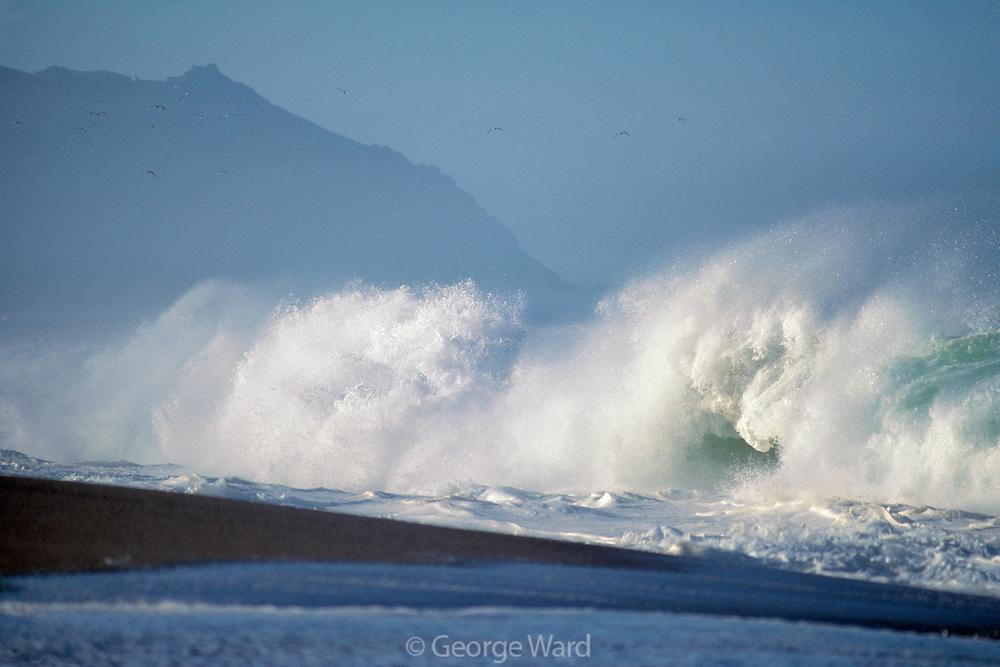 Big Shorebreak on the Great Beach and Point Reyes Head,Point Reyes National Seashore, California