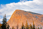 Evening light on  Lembert Dome, Tuolumne Meadows, Yosemite National Park, California