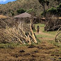 Africa, Kenya, Maasai Mara. Entrance to the Masai boma at Olanana.