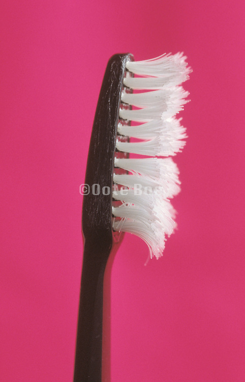 profile of an intensively used toothbrush