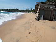 Sri Lanka, Ampara District, Arugam Bay, Pottuvil a small fishing village and popular surfing resort. Straw huts on the beach