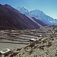 The Sherpa potato farming village of Dingboche sits high in the Khumbu Valley of Nepal's Himalaya.  Mounts Kangtega and Thamserku tower in the background.