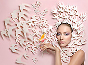 Fine Art Paper Sculpture,