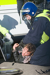 © Licensed to London News Pictures. 19/10/2011. Crays Hill, UK. Cambridge graduate Jake Fulton being arrested by police after being removed from Dale Farm Travellers site. Residents at Dale Farm, the UK's largest illegal traveller site being evicted today (19/10/2011) following a long dispute with Basildon Council . Travellers and activist had barricaded themselves in to the site in an attempt to prevent their eviction. Photo credit: Ben Cawthra/LNP